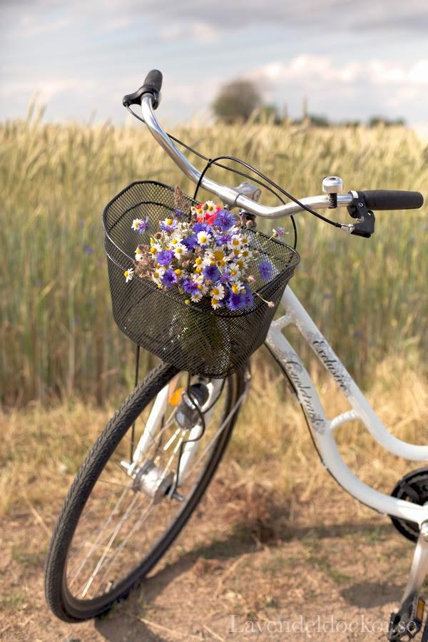 Glad midsommar fårn Lavendeldockor!